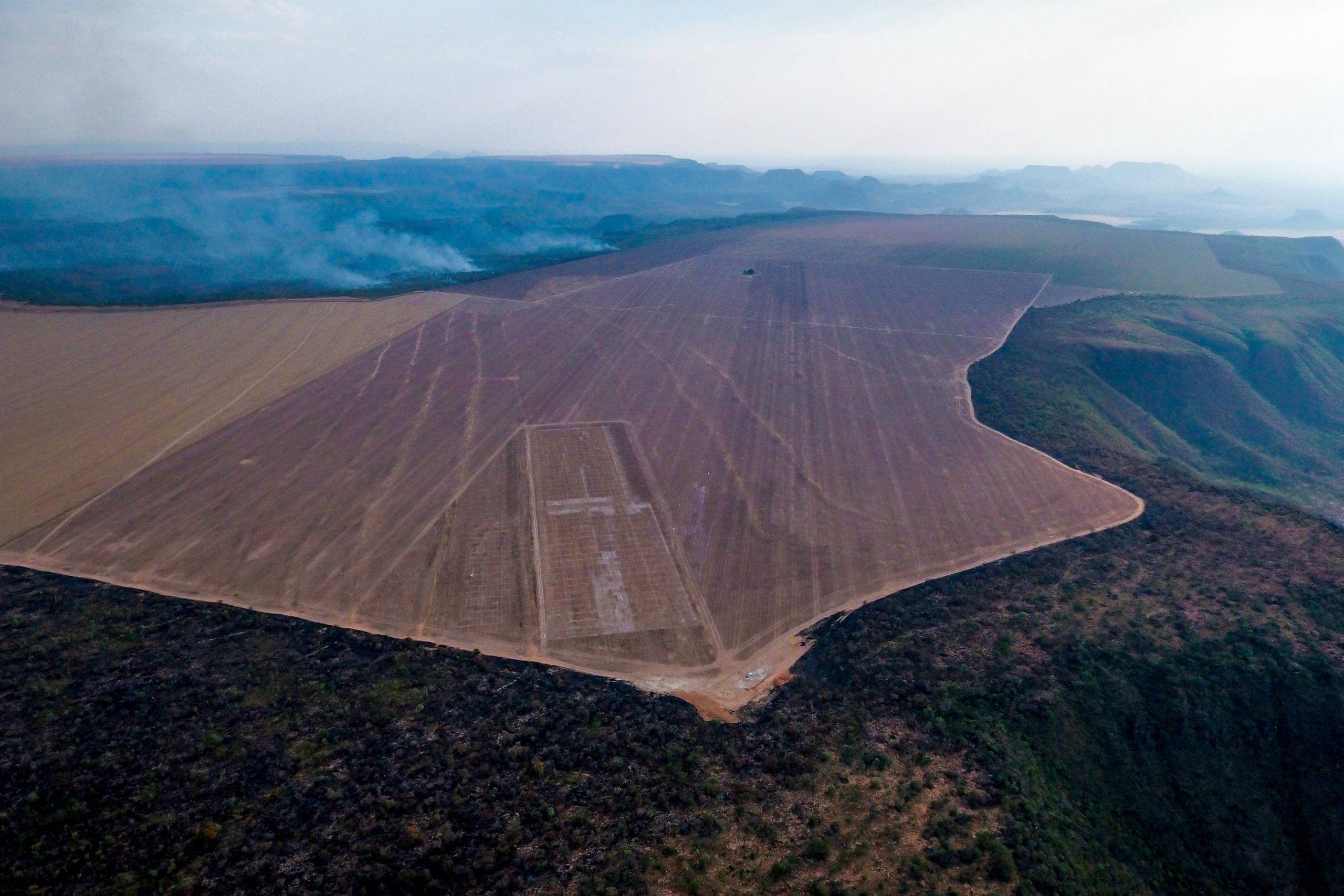 Harvard and TIAA's farmland grab in Brazil goes up in smoke
